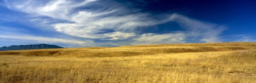 Stock Photo: 1555R-180024 San Rafael Valley, Arizona