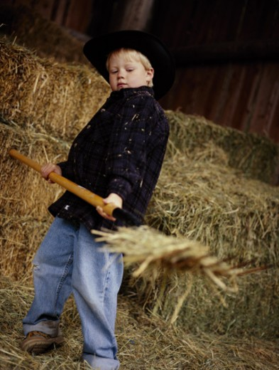 Boy pitching hay : Stock Photo