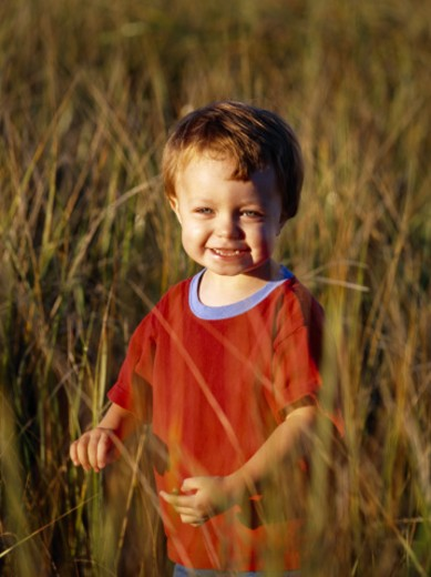Boy In field : Stock Photo