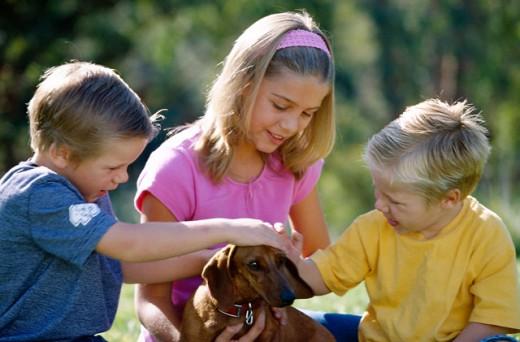 Children petting dog : Stock Photo
