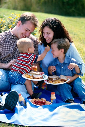 Stock Photo: 1555R-190070 Family picnic