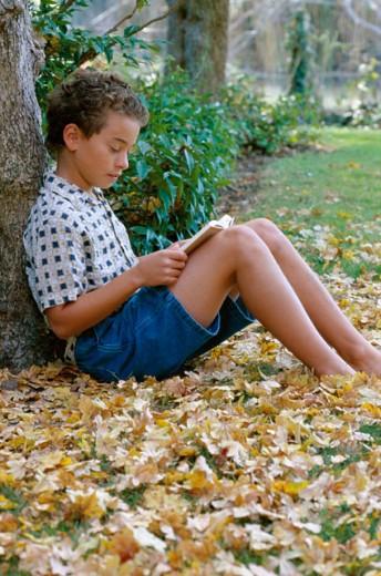 Boy reading book : Stock Photo