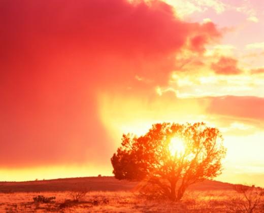 Stock Photo: 1555R-218040 Desert sunset