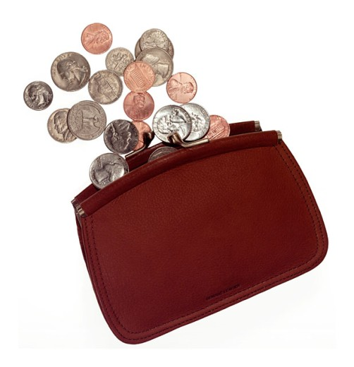Coins and coin purse : Stock Photo