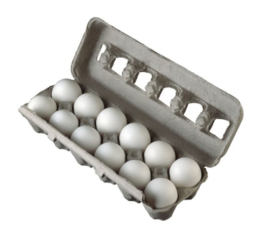 Stock Photo: 1555R-23030 Dozen eggs