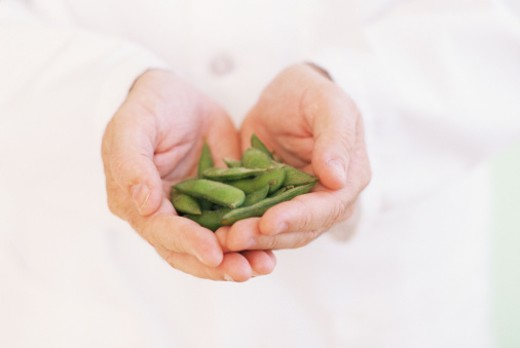 Hands holding soybean pods : Stock Photo