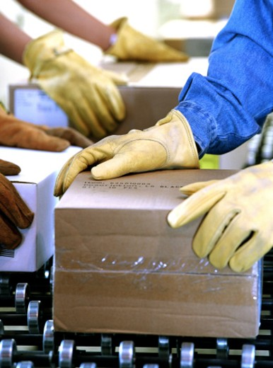 Stock Photo: 1555R-237067 workers handling boxes
