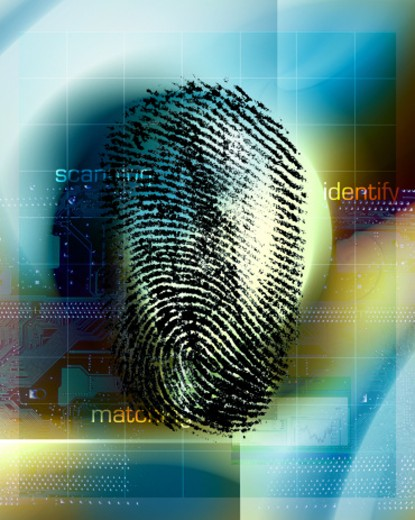 Fingerprint scan : Stock Photo