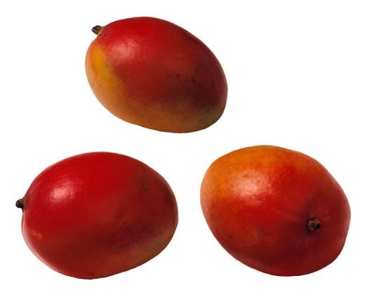 Stock Photo: 1555R-29078 Mangoes