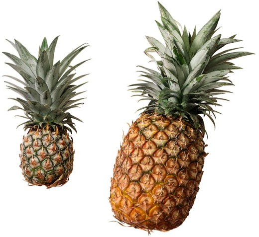 Stock Photo: 1555R-29090 Pineapples