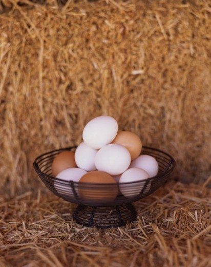 Stock Photo: 1555R-304415 Brown and White Eggs in Basket