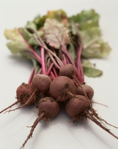 Stock Photo: 1555R-304452 Fresh Beets