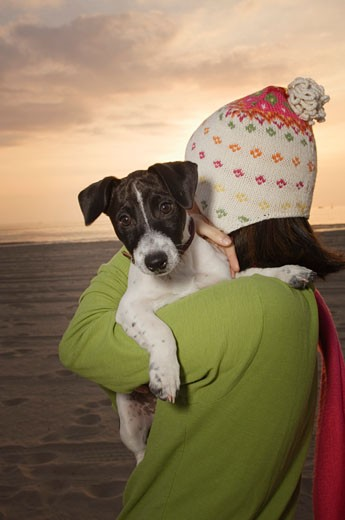 Stock Photo: 1555R-306805 Woman holding dog