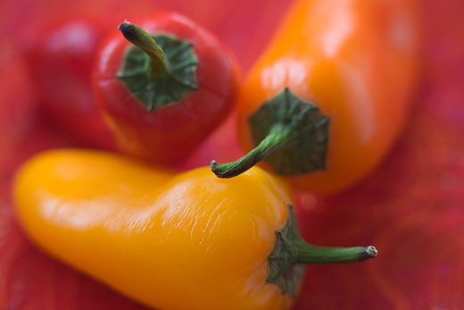Stock Photo: 1555R-313383 Close-up of peppers