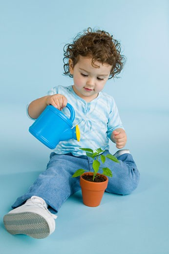 Girl watering plant : Stock Photo