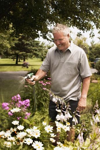 Stock Photo: 1555R-321057 Man watering garden
