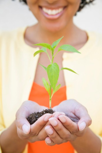 Stock Photo: 1555R-327199 Woman holding plant in soil