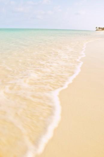 Shoreline of beach : Stock Photo