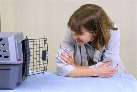Veterinarian opening pet cage : Stock Photo