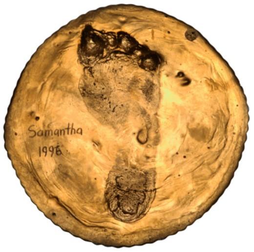 Stock Photo: 1555R-335819 Bronzed footprint