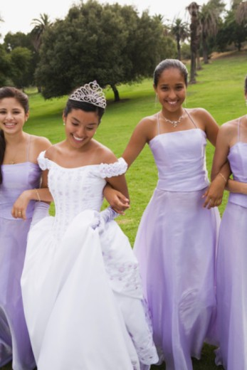 Portrait of quinceanera court : Stock Photo