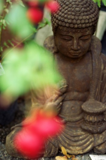 Buddha statue in garden : Stock Photo