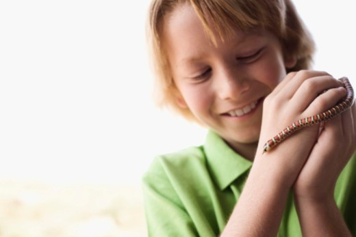 Boy holding snake : Stock Photo