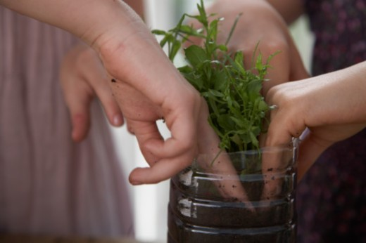 Close up of plant being potted by two girls in recycled pot : Stock Photo