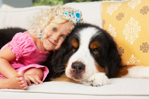 Portrait of little girl with dog : Stock Photo