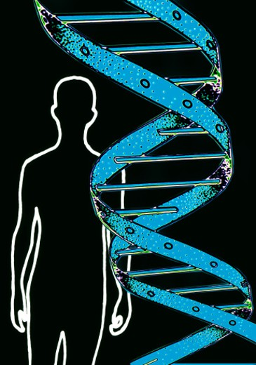 Stock Photo: 1555R-8028 Human DNA