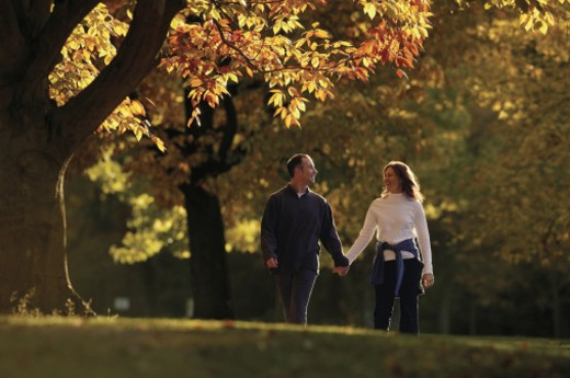 Couple holding hands while walking through park in fall : Stock Photo