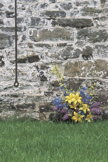 Flowers by a stone wall : Stock Photo