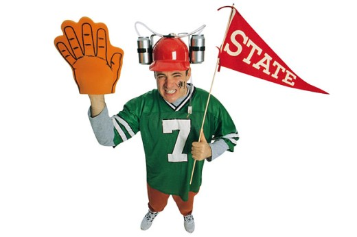 Football fan : Stock Photo