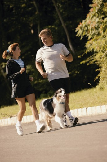 Couple jogging with dog : Stock Photo