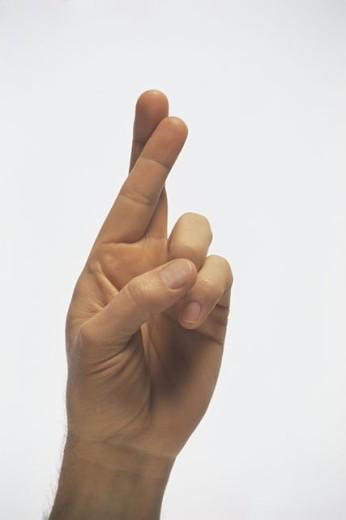 Hand crossing fingers : Stock Photo