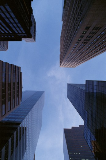 Stock Photo: 1557R-281003 Low angle view of skyscrapers