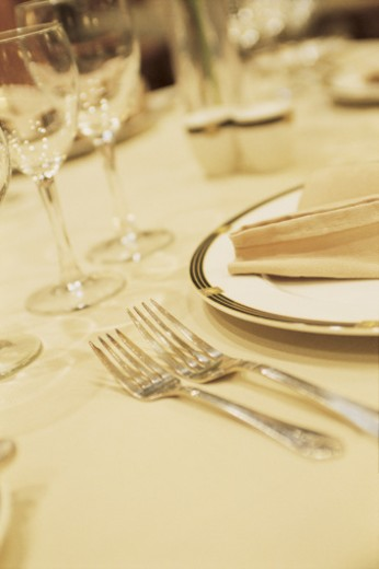 Stock Photo: 1557R-283109 Upscale table setting