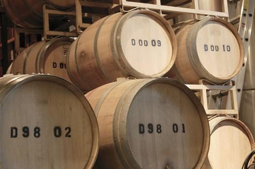 Barrels in wine cellar : Stock Photo