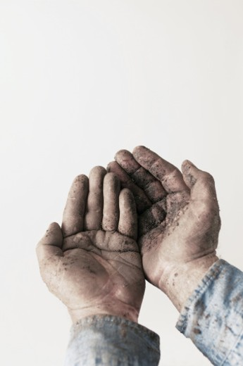 Man's hands covered with dirt : Stock Photo