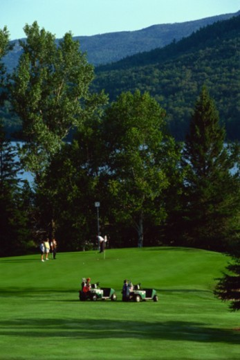 Stock Photo: 1557R-306583 People golfing