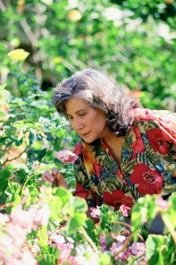Woman in garden smelling flowers : Stock Photo