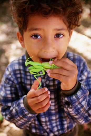Boy biting toy praying mantis : Stock Photo