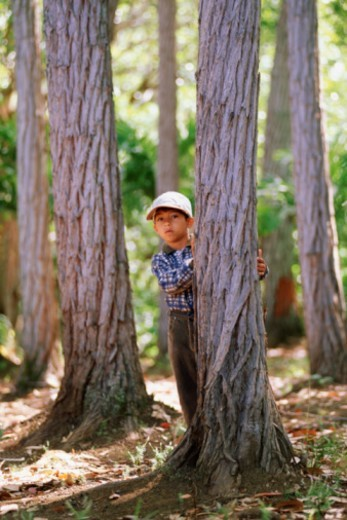 Boy hiding behind tree : Stock Photo