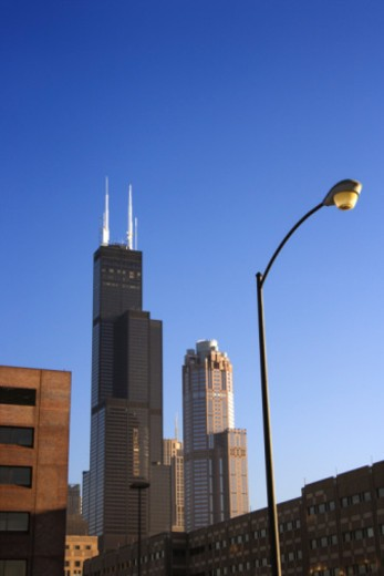 Sears Tower in downtown Chicago : Stock Photo