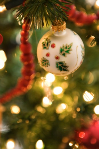 Ornament on Christmas tree : Stock Photo