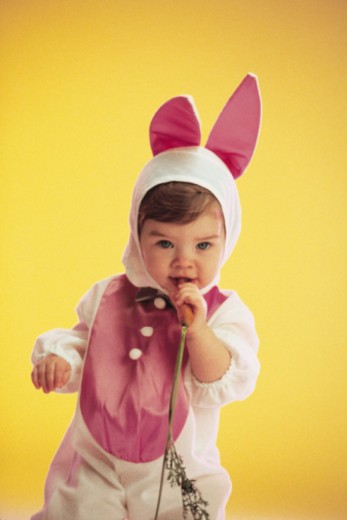 Toddler in a bunny costume holding a carrot : Stock Photo