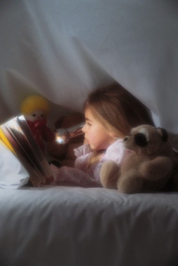 Stock Photo: 1557R-358538 Girl reading under covers with flashlight and toy animals