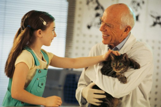 Girl and veterinarian with cat : Stock Photo