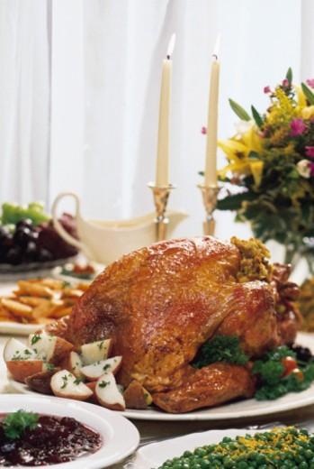 Stock Photo: 1557R-358966 Turkey dinner