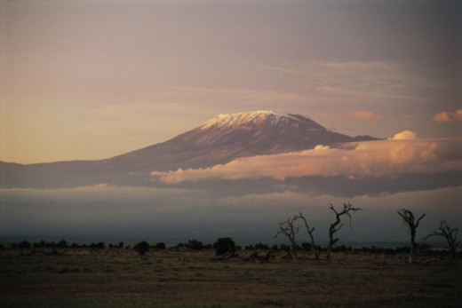 Mt. Kilimanjaro from Amboseli National Park , Kenya , Africa : Stock Photo